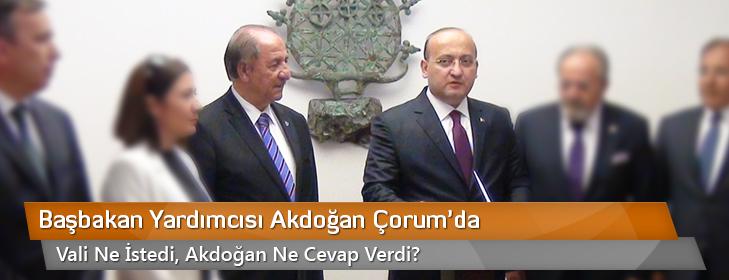 basbakan-yardimcisi-akdogan-corumda