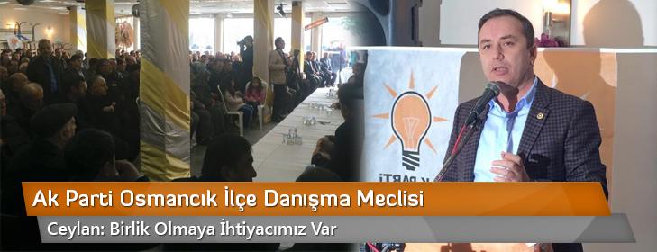 ak-parti-osmancik-ilce-danisma-meclisi