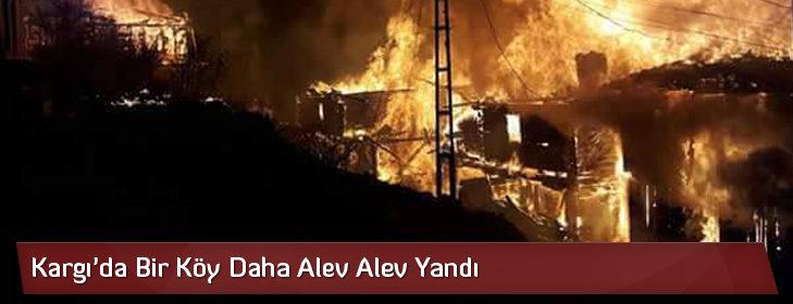 Kargı'da Bir Köy Daha Alev Alev Yandı