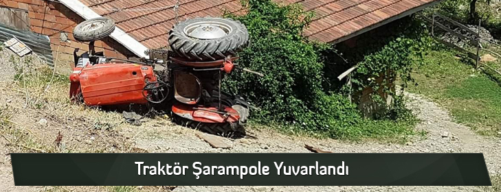 traktorsaranpoleyuvarlandi