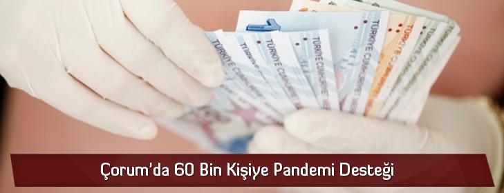 60binpandemidestegi